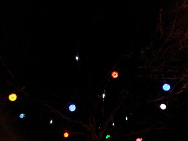 tree-lights-stanton-20121205_210430.jpg